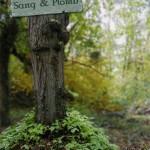 Sang & Plomb, le village