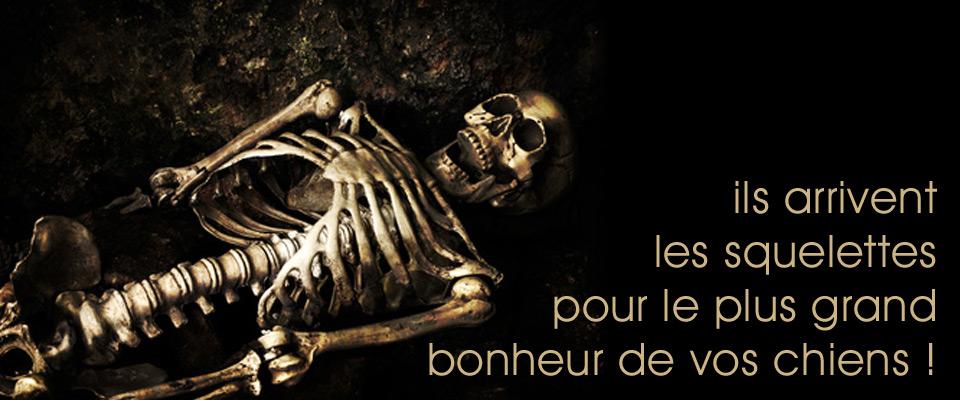 Les squelettes arrivent !